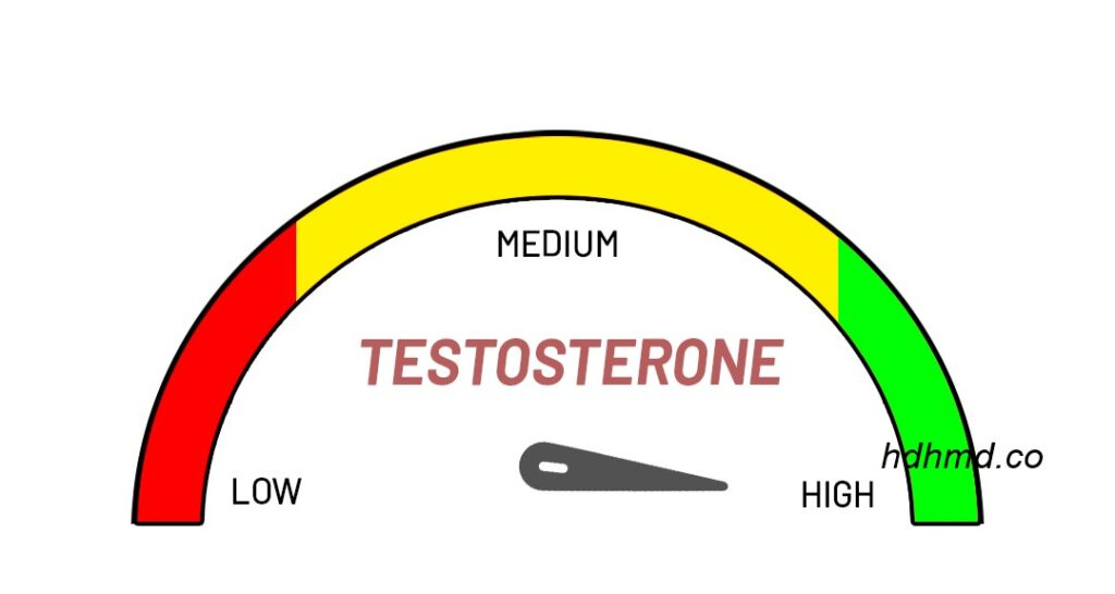 How to increase testosterone levels naturally with food