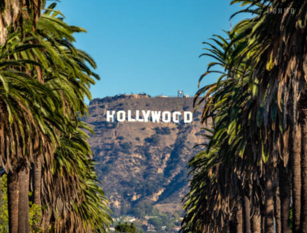 The sultriest pattern in Hollywood, health beauty and Weight training industry